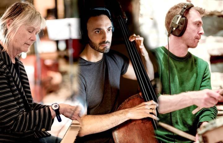 Arboreal Tour - Carole Nelson Trio